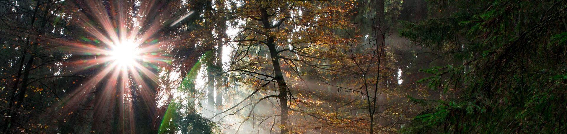 naturpark-flaeming