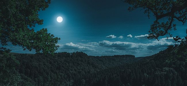 Vollmondwanderung-im-Erzgebirge